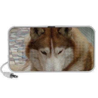 Altavoces portátiles del perro esquimal de Brown