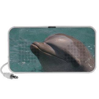 Altavoces portátiles lindos del delfín