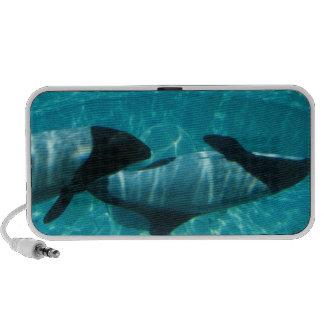 Altavoces subacuáticos de las ballenas