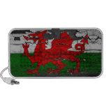 altavoz apenado de la bandera de País de Gales