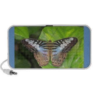 Altavoz azul de la mariposa de las podadoras