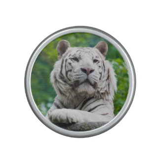 Altavoz blanco del bluetooth del tigre