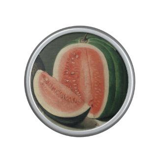 """Altavoz del bluetooth del arte de los """"melones"""""""