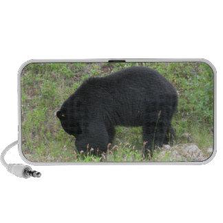 Altavoz del Doodle del oso negro