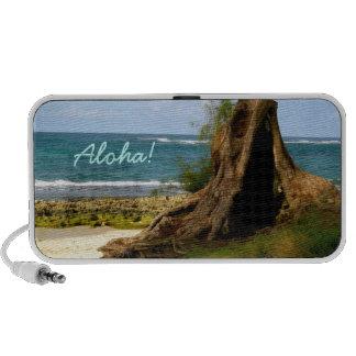 Altavoz hawaiano de la playa