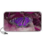Altavoz púrpura de la mariposa de monarca