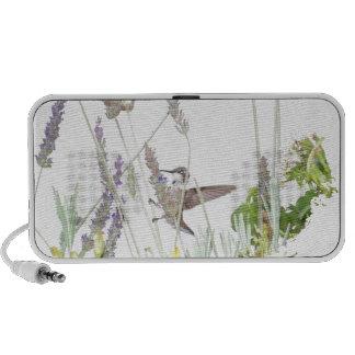 Altavoz querido del Doodle de OrigAudio del colibr