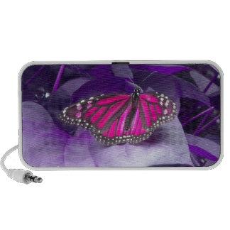 Altavoz rosado de la mariposa de monarca