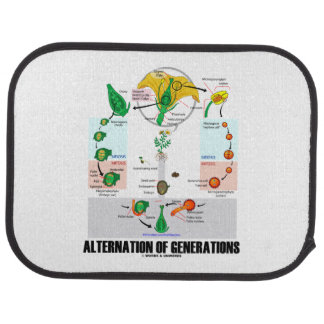 Alternation Of Generations Flower Life Cycle Car Mat