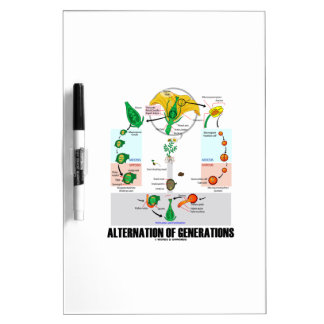 Alternation Of Generations (Flower Life Cycle) Dry-Erase Board