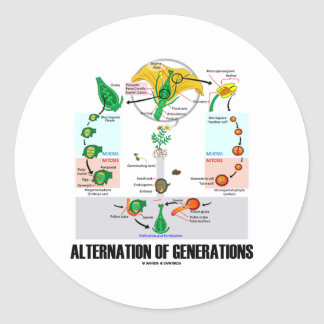 Alternation Of Generations (Flower Life Cycle) Round Stickers