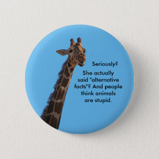 Alternative facts pinback button