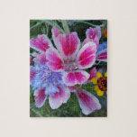 Althaea, cornflower y chamomilla rompecabeza con fotos