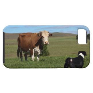 Although Cows and dogs are from different iPhone SE/5/5s Case