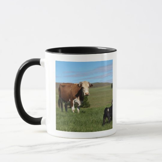 Although Cows and dogs are from different Mug