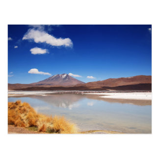 Altiplano landscape with volcano in Bolivia Postcard