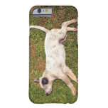 Alto ángulo de un perro que miente en dormir de la funda para iPhone 6 barely there