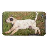 Alto ángulo de un perro que miente en dormir de la iPod Case-Mate protectores