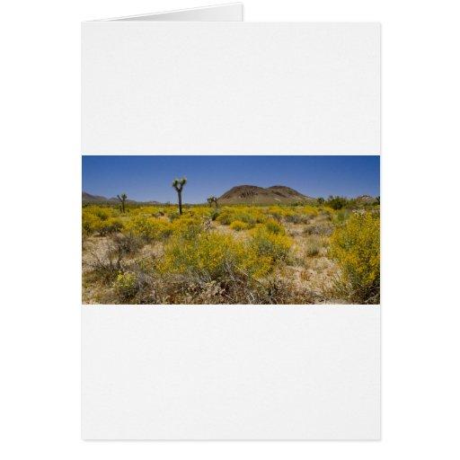 Alto color del desierto tarjeta de felicitación