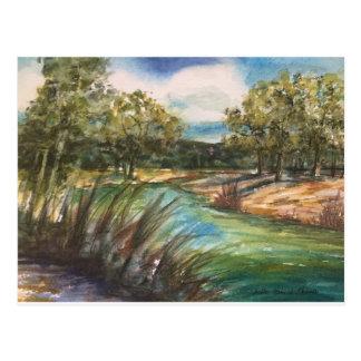 Alto Frio River Postcard