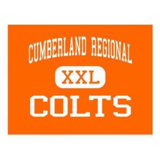 Alto regional del Cumberland - potros - - Bridgeto Tarjeta Postal