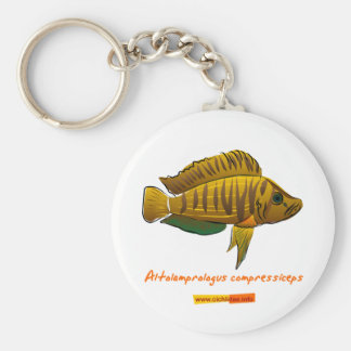 Altolamprologus compressiceps basic round button keychain