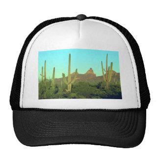 Altos Saguaros en el desierto Gorras