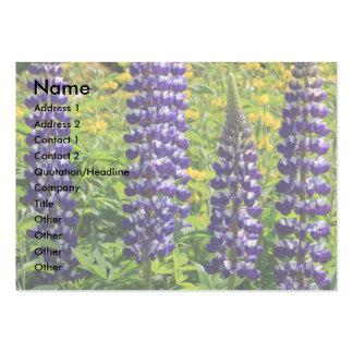 Altramuz púrpura tarjetas de visita grandes