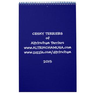 Altrincham Cesky Terriers Calendar 2015