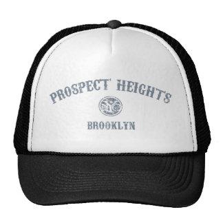 Alturas de la perspectiva gorras de camionero