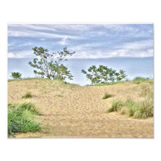 Alturas de la playa NJ Cojinete