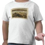 Alturas, montañas de Escocia Camisetas