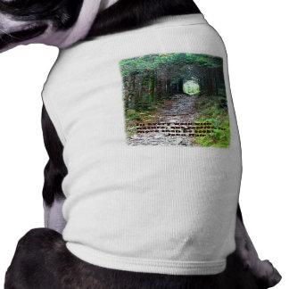 Alum Cave Trail: Every walk w/nature… John Muir Doggie Shirt