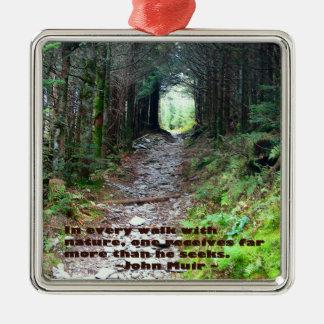 Alum Cave Trail: Every walk w/nature… John Muir Metal Ornament