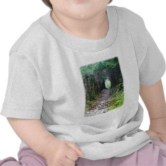 Alum Cave Trail: Every walk w/nature… John Muir T Shirts