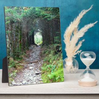 Alum Cave Trail on Mt. LeConte Plaque