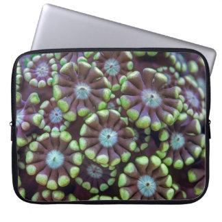 Alveopora pattern laptop sleeve