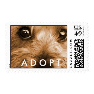 Always adopt postage stamp