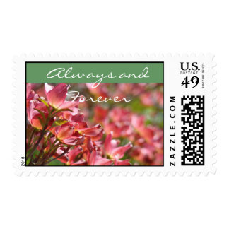 Always and Forever postage stamps Dogwood Flowers