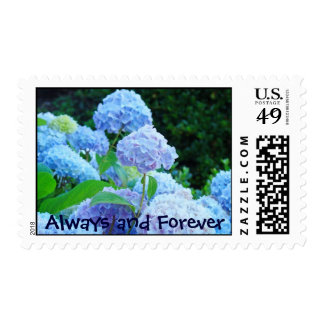 Always and Forever postage stamps Hydrangea Flower