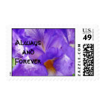 Always and Forever stamps Wedding Showers postage