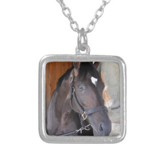 Always Dreaming Silver Plated Necklace