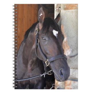 Always Dreaming Spiral Notebook