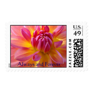 Always Forever postage stamp Pink Yellow Dahlia
