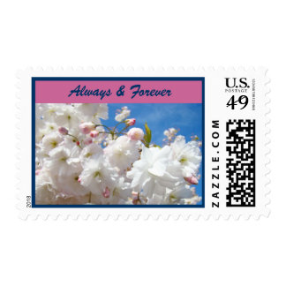 Always & Forever postage stamps Wedding Blossoms