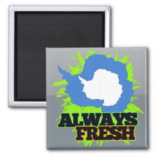 Always Fresh Antarctica 2 Inch Square Magnet