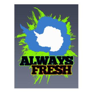 Always Fresh Antarctica Postcard