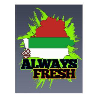 Always Fresh Belarus Postcard