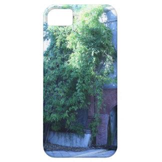 Always greener iPhone SE/5/5s case