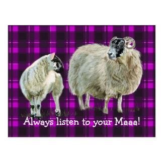 Always listen to your Maaaa! Postcard